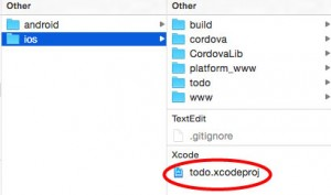 Find the Xcode file